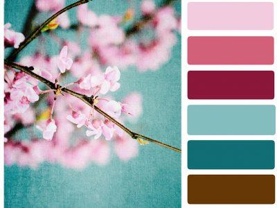 Hvilke farger skal du velge til websiden?