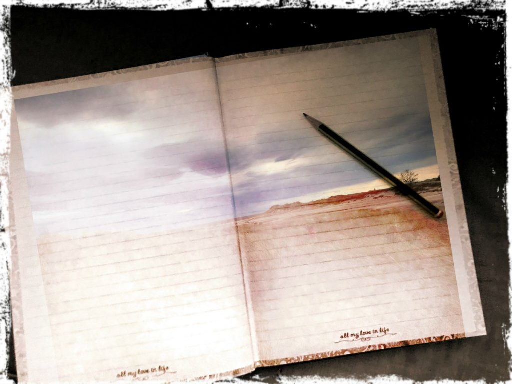 skriv ned det du vil